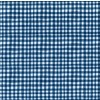 Gingham Play On Minky - Blue