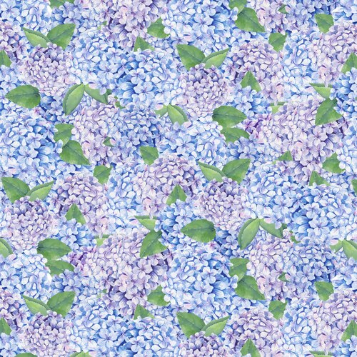 Coastal Paradise Hydrangeas Blue