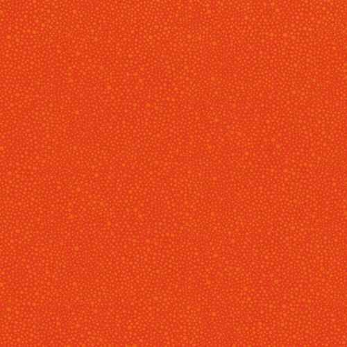 Hopscotch Random Dots Carrot