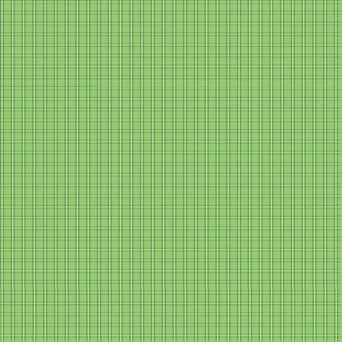 Warp & Weft Tiny Plaid Green 6608Y/40