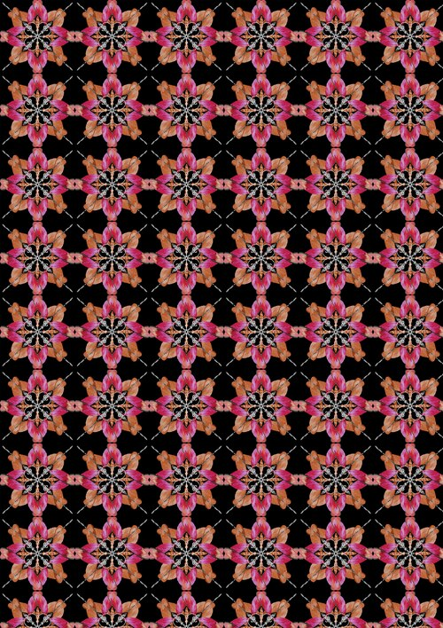 Blooming Beauty 17820-28 Floral Patch Coral/Pink