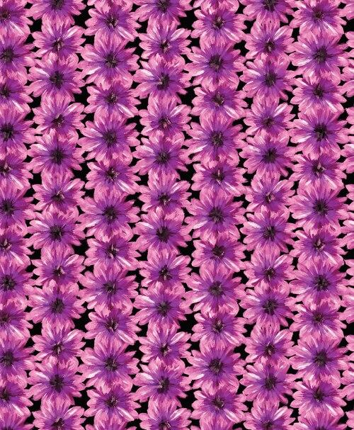 Blooming Beauty 17821-62 Floral Black/Violet