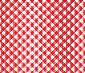 Best Friends Farm Red Gingham Check Cotton Children's Fabric