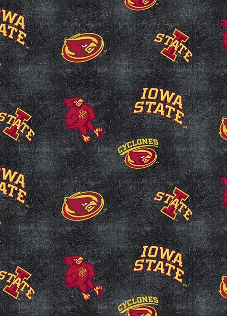 Iowa State Distressed Logo