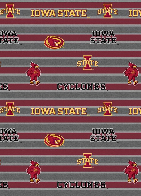 Iowa State Polo Stripe 1133