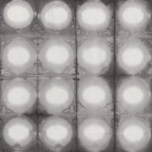 Pollinator Circles in Foglight LT305-FO4
