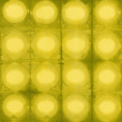 Circles/Lime Julep: Pollinator (Leslie Tucker Jenison)