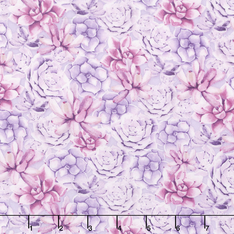 HUMMING ALONG SUCCULENTS VIOLET 33832663 Wilmington Prints