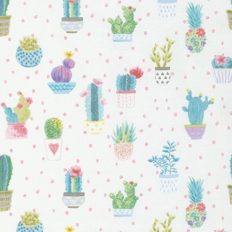 Sun N' Soil Cactus with Dot