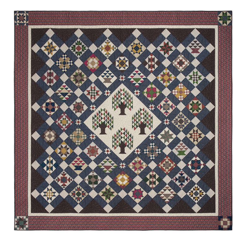 Bristle Creek Farmhouse Quilt Kit
