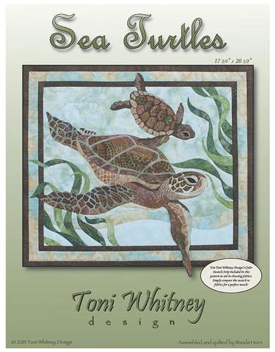Sea Turtles Kit