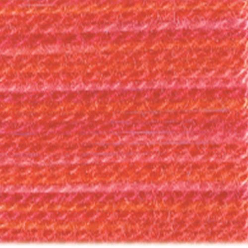 DMC Color Variations Floss 4200