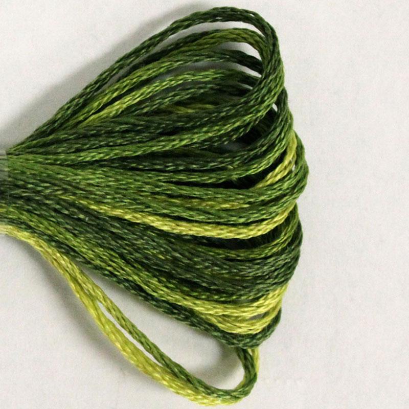 DMC 4066 Amazon Moss