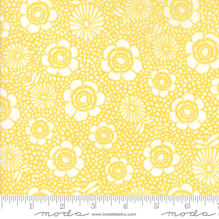 108 Harmony Sunshine