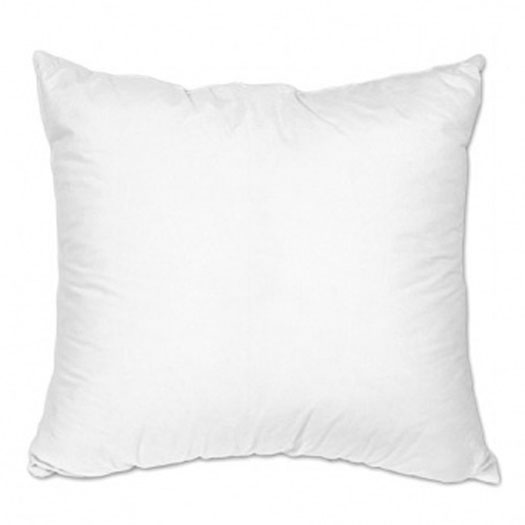 Decorative Pillow Insert  20x20