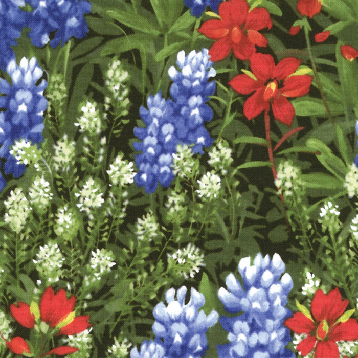 Wildflowers with some bluebonnets