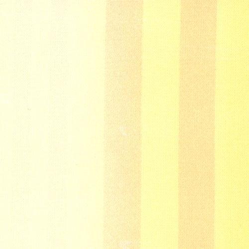 *Coquette Buttercup stripe