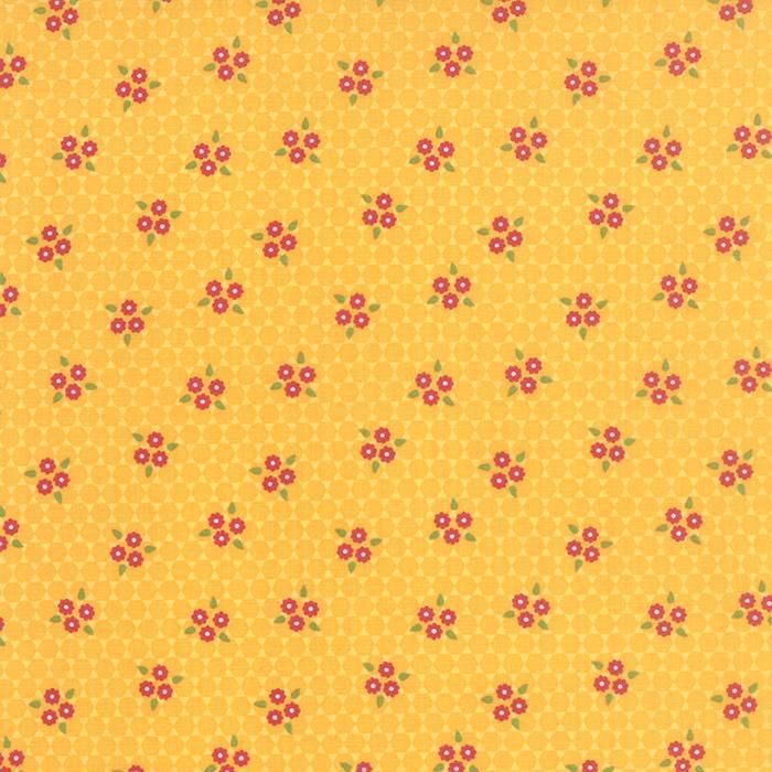 Meadowbloom Daisy