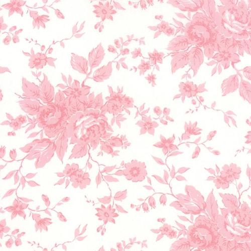Kindred Spirits Ivory Pink