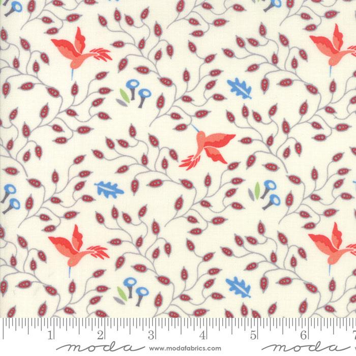 Bloomsbury Hummingbirds Natural