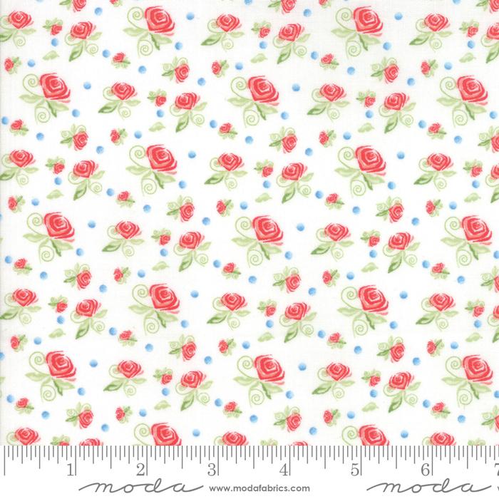 Coledale Miniature Roses White 47523 11