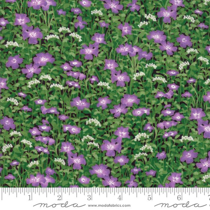 Wildflowers IX Lilac
