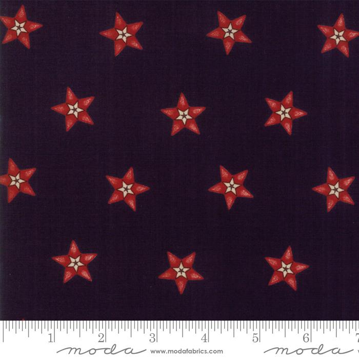 Star Stripe Gath Navy