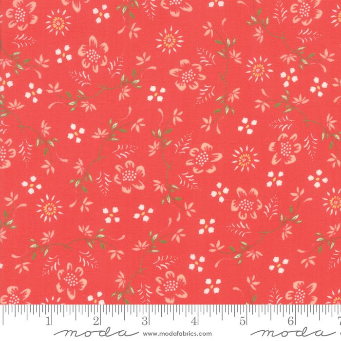 Harpers Garden - Geranium 37571 15