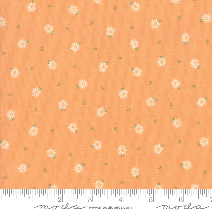 Summer Sweet 37583-16 Apricot