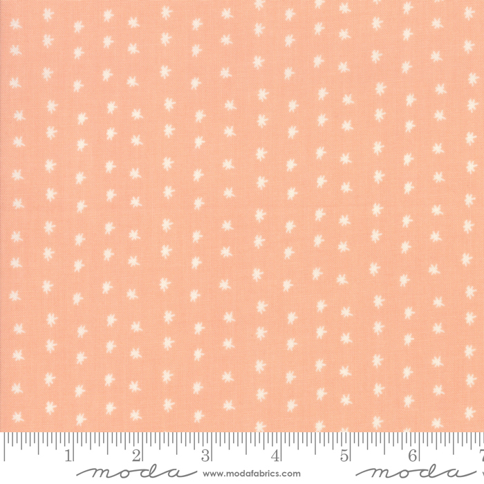 Summer Sweet Apricot 37585 14