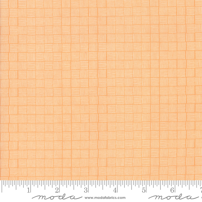 37586 16 Summer Sweet Apricot
