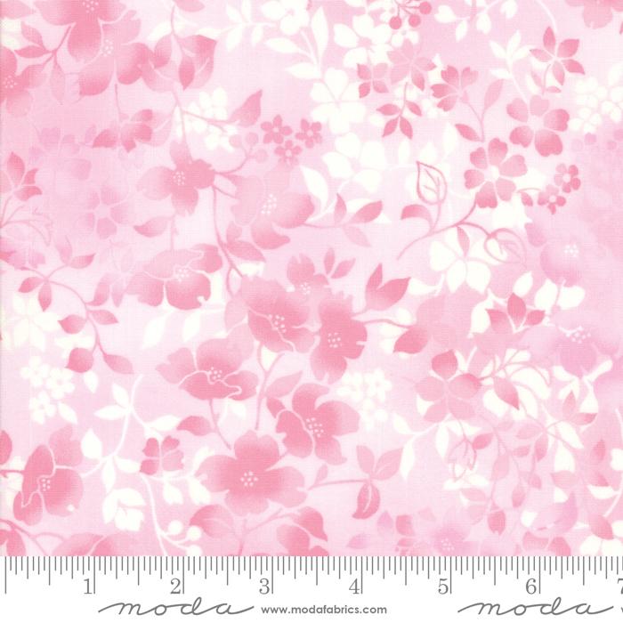 Sakura Park Blossom