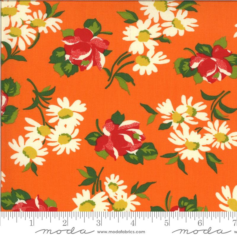 Its Elementary OrangeAmerican Jane for Moda - 21783 13