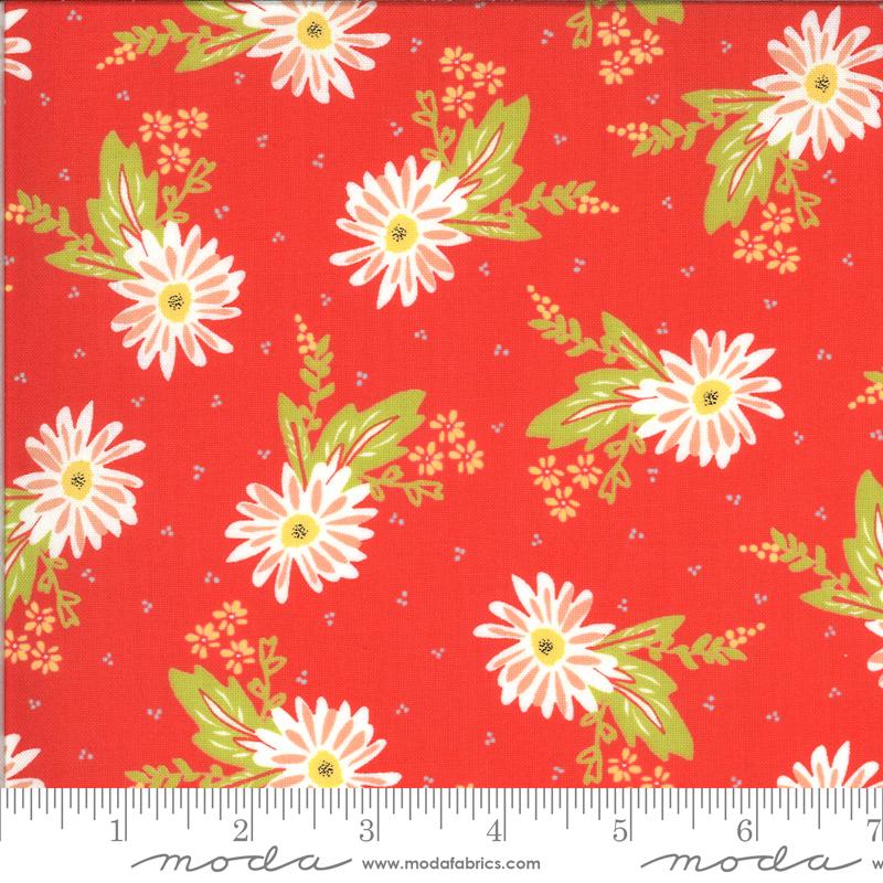 Happy Days Carnation Geranium