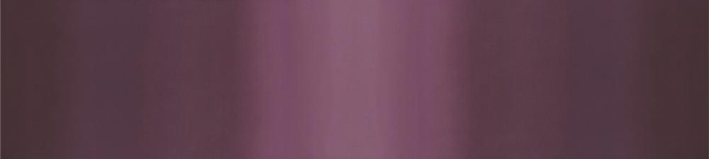 10800 25 Simply Style eggplant