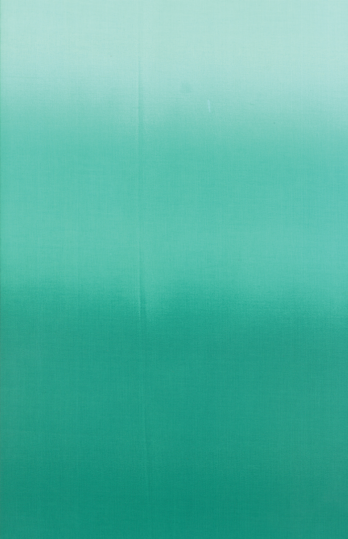 Ombre Teal 10800 31