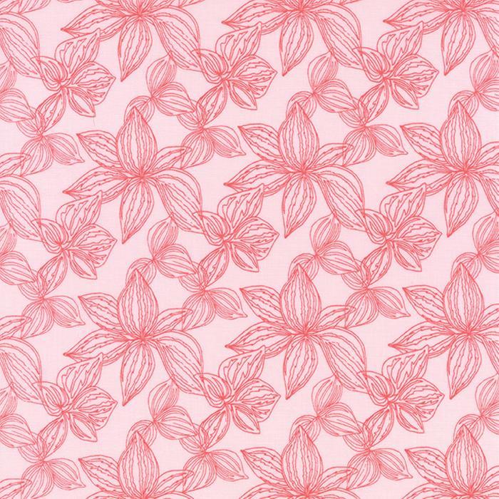 Moda Aria Lily Begonia