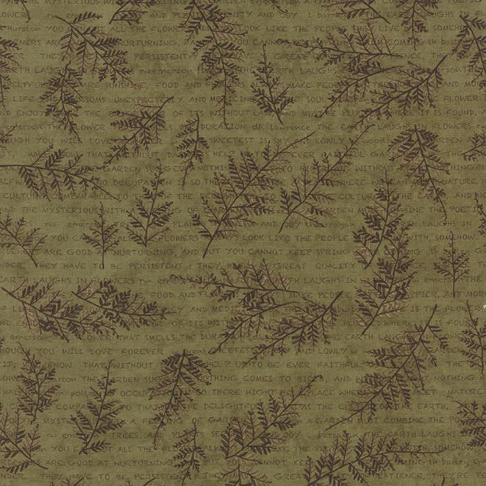 The Potting Shed 6622 13 Fern