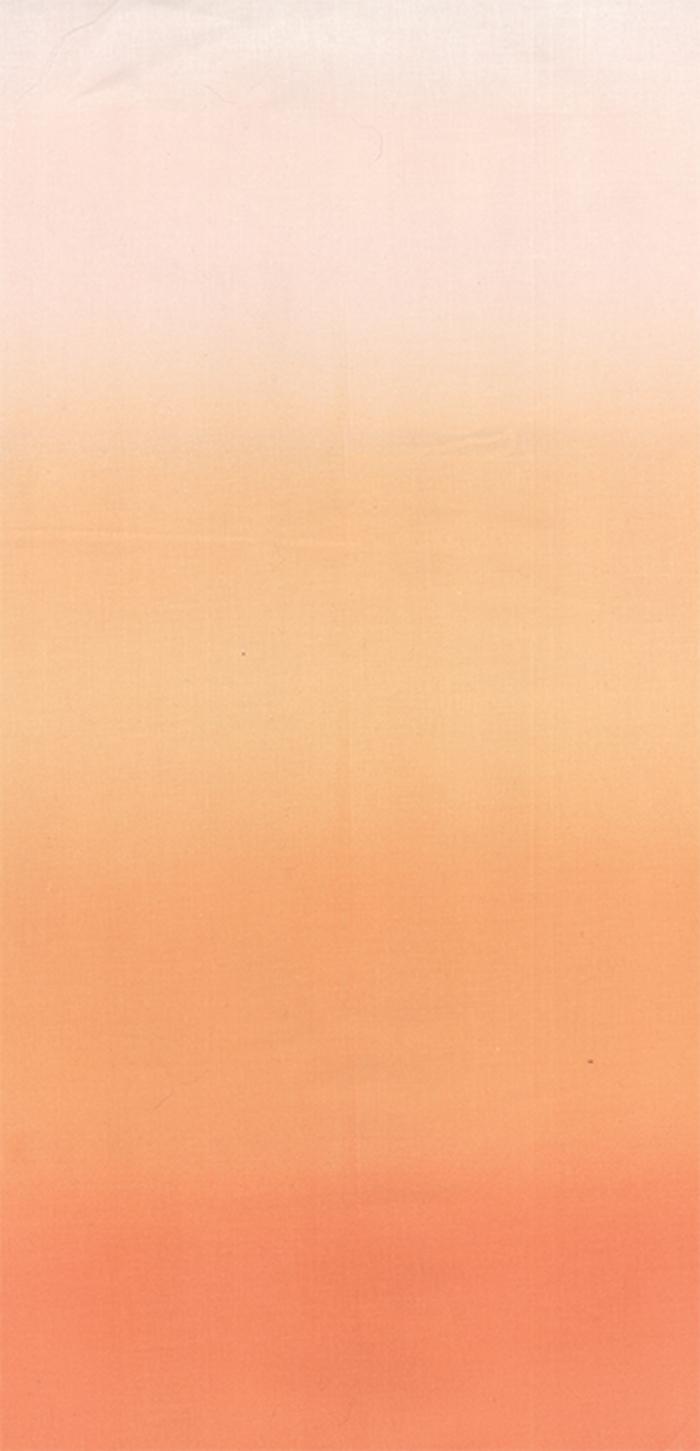 10800 221 Coral Ombre Moda