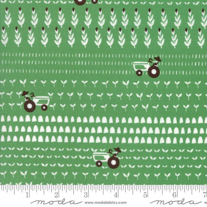 Farm Fun Grass