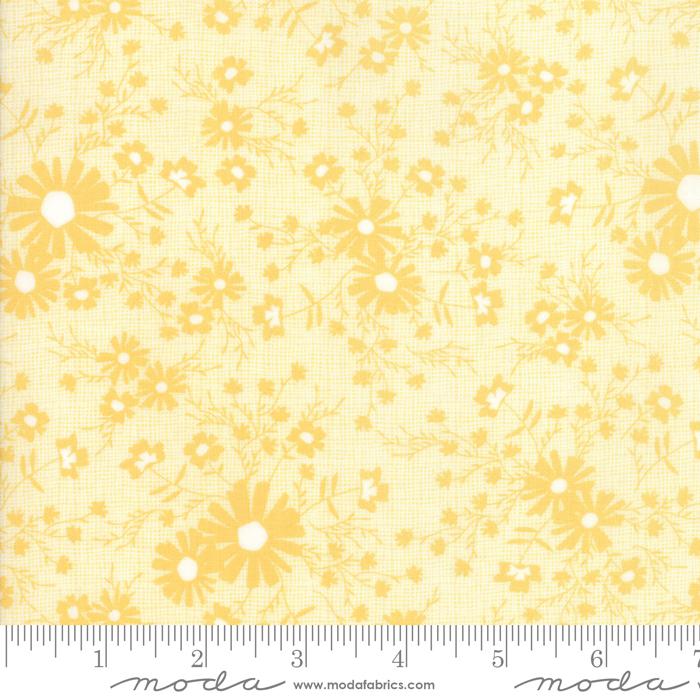 Sunnyside Up Sunny 29054-13