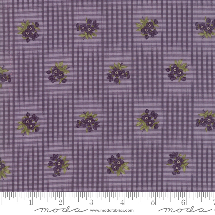 Sweet Violet Violet 2222 14