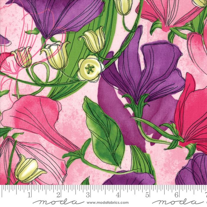 Sweet Pea Lily Primrose Floral
