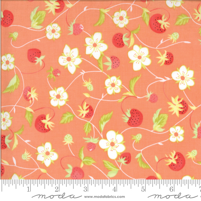 Chantilly Gerbera by Fig Tree Quilts 20341 11