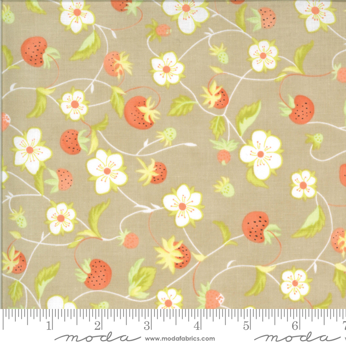 Chantilly Cobblestone by Fig Tree Quilts 20341 16