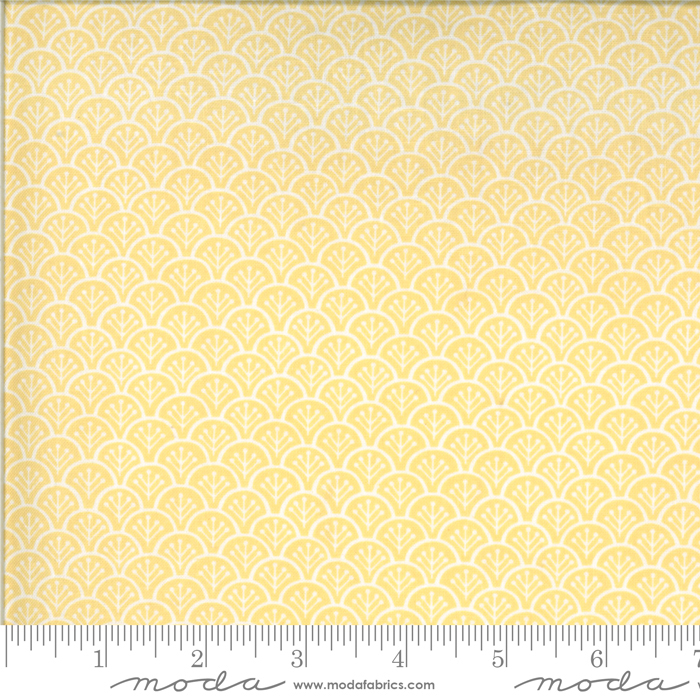 Chantilly Daisy by Fig Tree Quilts 20344 13