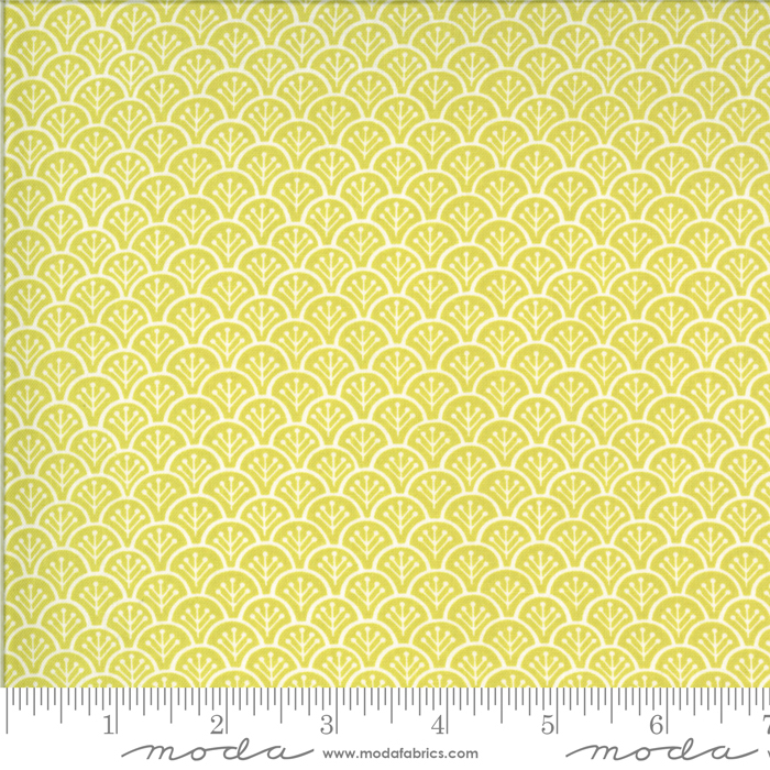 Chantilly Sprout by Fig Tree Quilts 20344 18