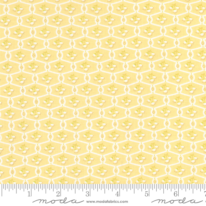 Chantilly Daisy by Fig Tree Quilts 20345 13