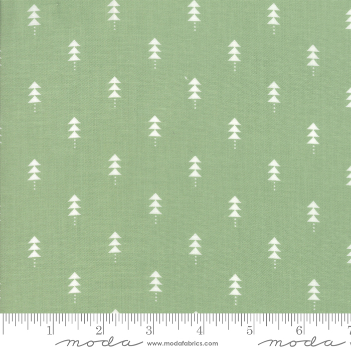 Little Tree Pine Trees