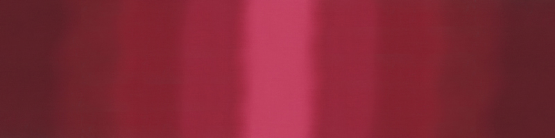 Ombre Burgundy V & Co 510800-317